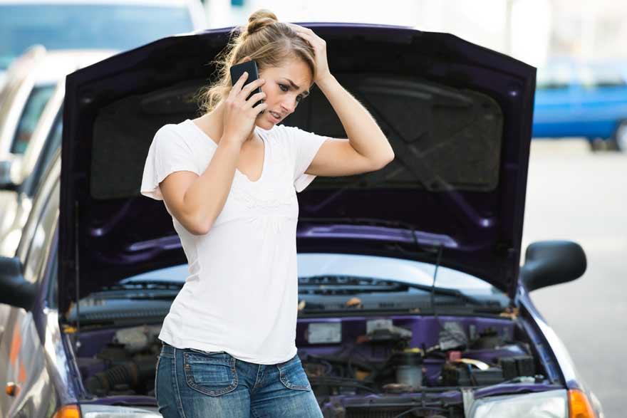 Dame trenger bildeler